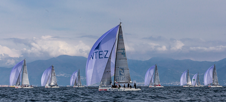 Audi Sailing Series, Melges32, Synergy